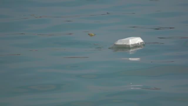 junk foam in sea - polystyrene stock videos & royalty-free footage