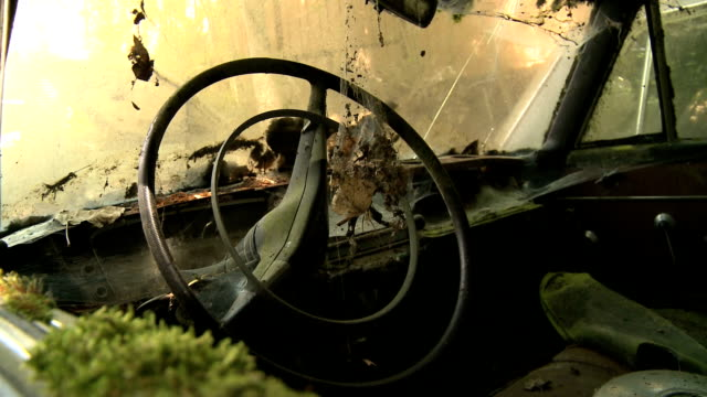 junkyard - junkyard stock videos and b-roll footage