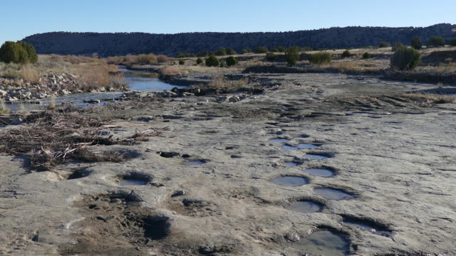 jurassic apatosaurus sauropod dinosaur tracksite purgatoire river colorado - jurassic stock videos & royalty-free footage