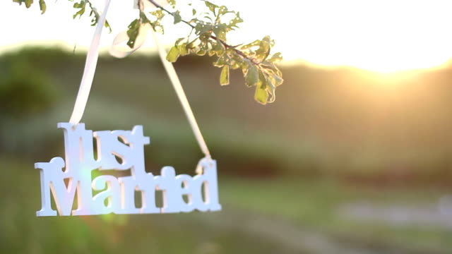 just married decoration for wedding - lawn stock videos & royalty-free footage