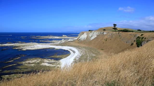 kaikoura peninsula walkway, south island, new zealand - kaikoura stock videos & royalty-free footage
