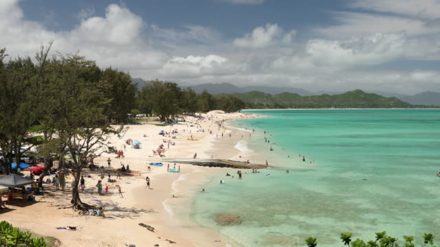 stockvideo's en b-roll-footage met kailua beach park hawaii - oahu