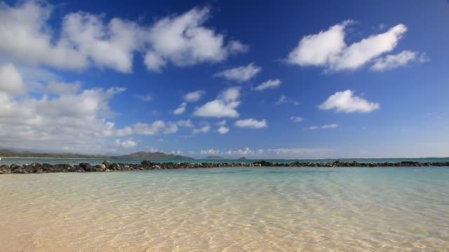 kaiona beach - 44940b - 溜水点の映像素材/bロール