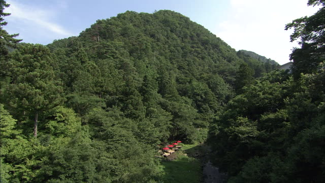 kakusenkei gorge in japan - ishikawa prefecture stock videos and b-roll footage