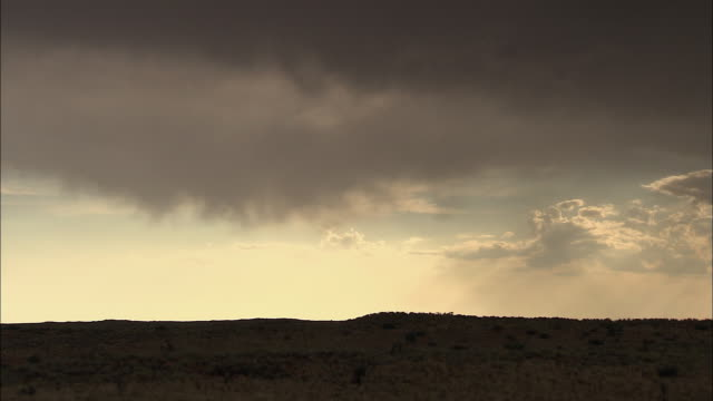 vídeos de stock, filmes e b-roll de ws t/l kalahari desert under twilight sky / kalahari desert, north west, south africa - deserto de kalahari