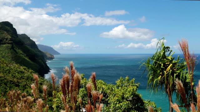 kalalau trail landschaft, na pali coast state park, kauai, hawaii - insel kauai stock-videos und b-roll-filmmaterial