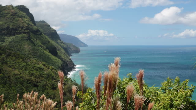kalalau trail landscape, napali coast state park, kauai, hawaii - hawaii islands stock videos and b-roll footage