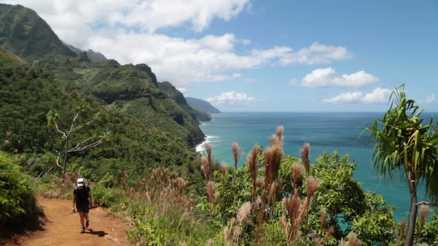 kalalau trail landscape, napali coast state park, kauai, hawaii - isola di kauai video stock e b–roll