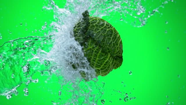SLO MO boerenkool wordt bespat door water op groene achtergrond