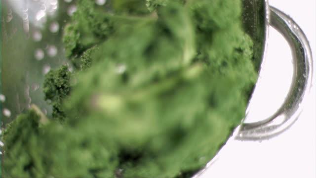 kale being washed in super slow motion - kale stock videos and b-roll footage