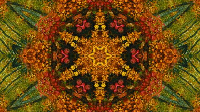 vídeos y material grabado en eventos de stock de a kaleidoscope of fall colors (loop). - concéntrico