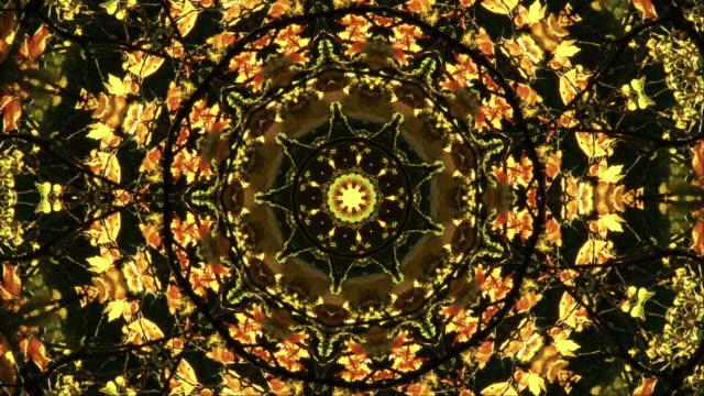 a kaleidoscope of fall foliage - kaleidoscope pattern stock videos and b-roll footage