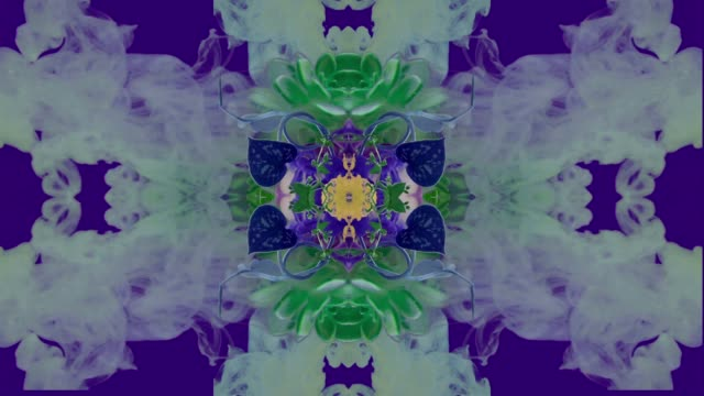 Kaleidoscope of plant with ink in water