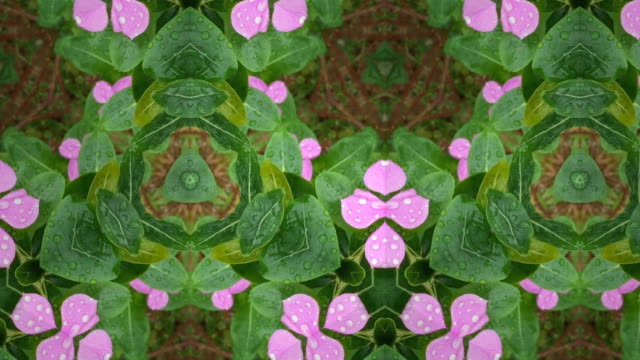 kaleidoscope pattern background - kaleidoscope pattern stock videos & royalty-free footage