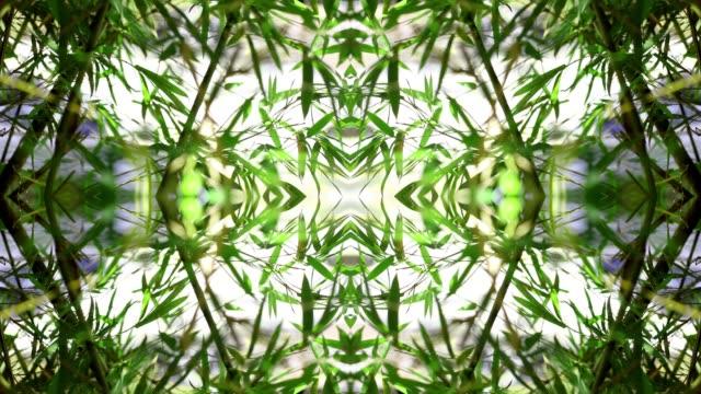 Kaleidoscopic Mandala of Green Leaves