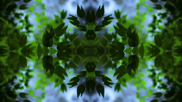 kaleidoscopic mandala of green leaves - mandala stock videos & royalty-free footage