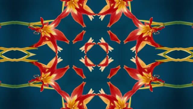 Kaleidoscopic Mandala of Strelitzia reginae