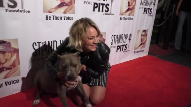 kaley cuoco at stand up for pits comedy benefit at the improv comedy club in west hollywood in celebrity sightings in los angeles, - sketch comedy stock videos & royalty-free footage