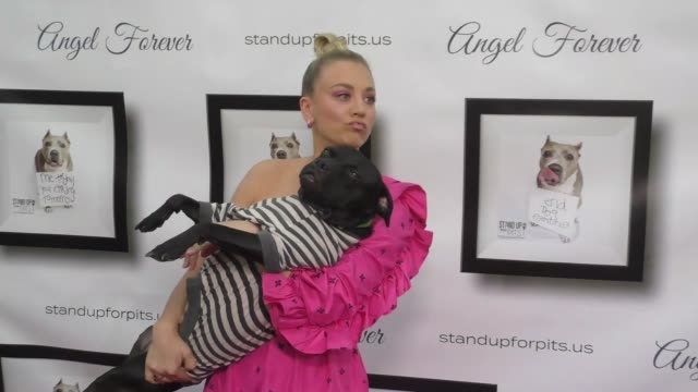 kaley cuoco & rebecca corry at the 8th annual stand up for pits at improv comedy club in west hollywood in celebrity sightings in los angeles, - スケッチコメディー点の映像素材/bロール
