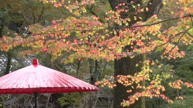 Kamado shrine is located at the top of Mount Homan in Dazaifu It has been an object of worship for avoidance of bad luck through the ages Many...