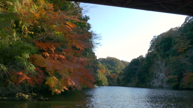 kameyama lake in autumn, kimitsu, japan - satoyama scenery stock videos & royalty-free footage