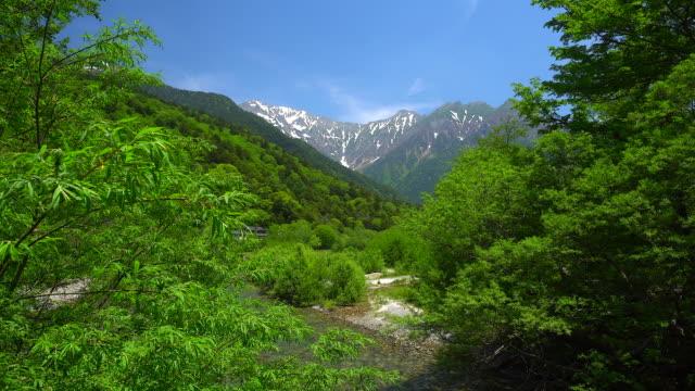 kamikochi in nagano - naturwald stock-videos und b-roll-filmmaterial