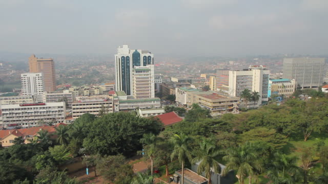 kampala - tropical rainforest stock videos & royalty-free footage