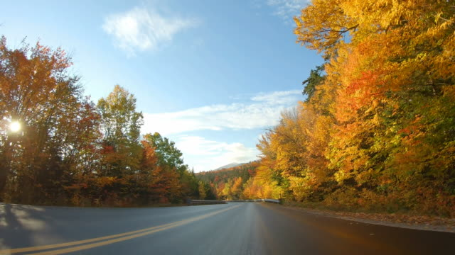 kancamagus highway in northern new hampshire - lush video stock e b–roll