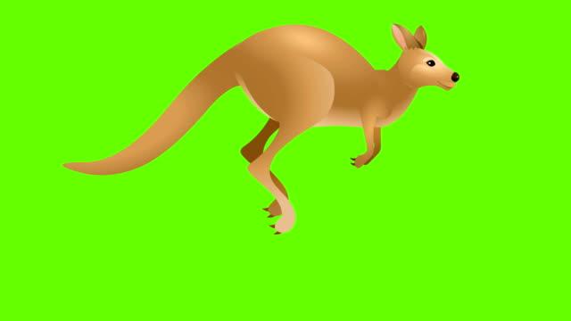 カンガルーランサイクルアニメーション - カンガルー点の映像素材/bロール