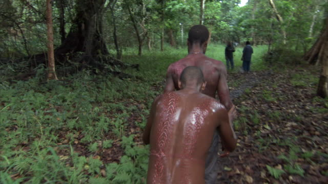 kaningara crocodile man being led away after initiation scarring ceremony, sepik, png  - ärr bildbanksvideor och videomaterial från bakom kulisserna