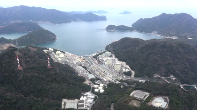 Kansai Electric Power Co halted on Thursday a reactor at its Takahama nuclear power plant a day after a court ordered the utility to shut it down The...