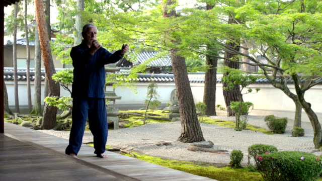 vídeos de stock, filmes e b-roll de karatê no jardim japonês - karate