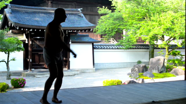karate in japanese garden - kyoto temple stock videos and b-roll footage