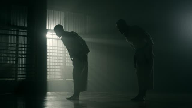 vídeos de stock, filmes e b-roll de karate  - karate