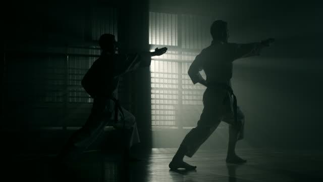 vídeos de stock, filmes e b-roll de karate  - coordenação