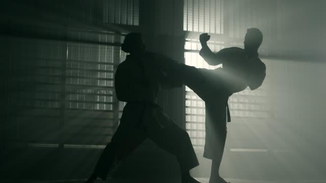 karate  - calciare video stock e b–roll