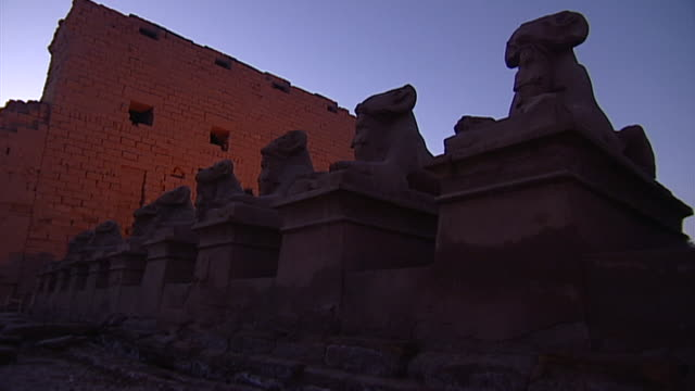 karnak temple complex. avenue of sphinxes at sunrise. - orthographic symbol stock videos & royalty-free footage