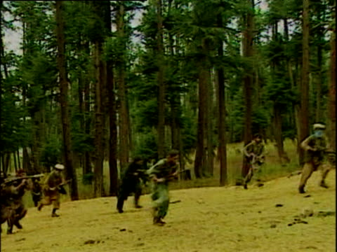 kashmir militant rebels with covered faces walk near forest carrying ak 47's kashmir; 2001 - militant groups stock videos and b-roll footage