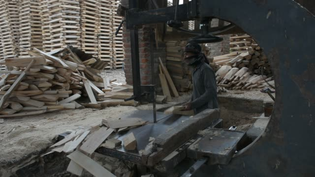 kashmiri worker designs cricket bats in a factory on june 08, 2019 in halmullah, 50 km south of srinagar, the summer capital of indian administered... - durability stock videos & royalty-free footage