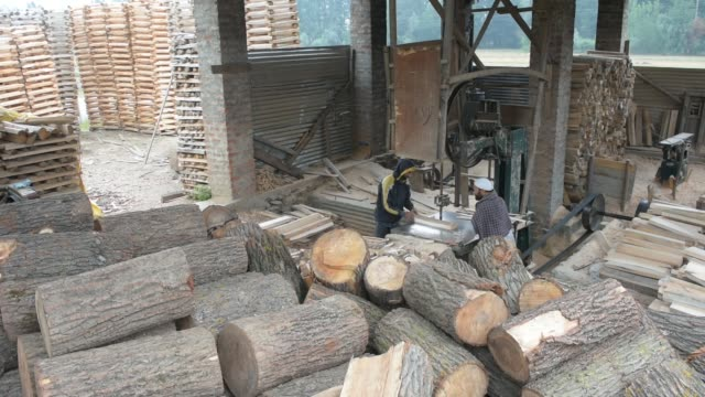 kashmiri workers saw willow clefts to rough shape them into cricket bats in a factory on june 08 2019 in halmullah 50 km south of srinagar the summer... - クリケットバット点の映像素材/bロール