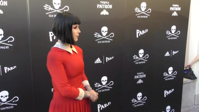 kat von d at the sea shepherd conservation society's 40th anniversary gala for the oceans at montage beverly hills on june 10, 2017 in beverly hills,... - モンタージュ・ビバリーヒルズ点の映像素材/bロール