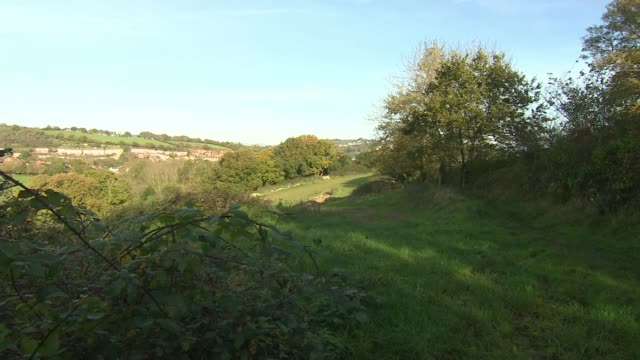 new plea on 20th anniversary of death england devon exeter ext 'public footpath' sign gate and path surrounded by hedges fields fields and housing... - 懇願する点の映像素材/bロール