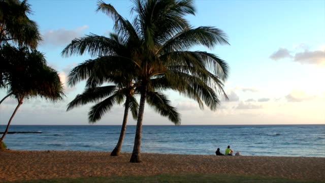 kauai beach - kauai stock videos and b-roll footage