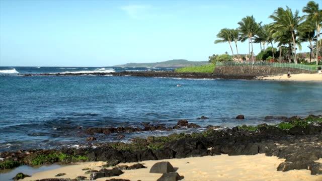 vídeos de stock, filmes e b-roll de praia de kauai - tocha tiki