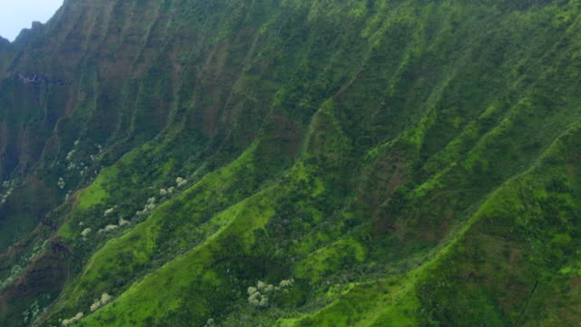 Kauai Hawaii aerial from helicopter of the breath-taking Na Pali coast canyons cliffs Na Pali-Kona Forest Reserve 4K