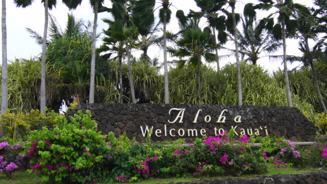 kauai hawaii aloha welcome to kauai sign to welcome tourists and visitors with palm trees, 4k - insel kauai stock-videos und b-roll-filmmaterial