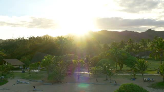 ハワイ州カウアイ島の美しい uav ドローンショット - 顕花植物点の映像素材/bロール