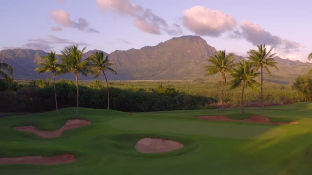 kauai landscape - golf course stock videos & royalty-free footage
