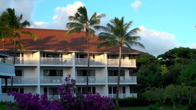 vídeos y material grabado en eventos de stock de kauai - isla grande de hawái islas de hawái