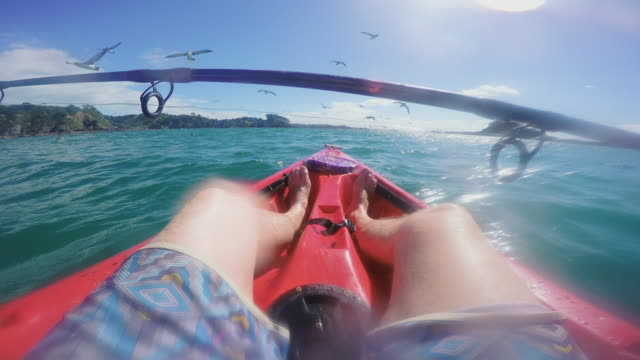 POV Kayak Sea Fishing with Birds
